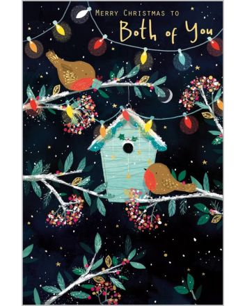 Abacus Christmas Lights and Robins Both of You Christmas Card