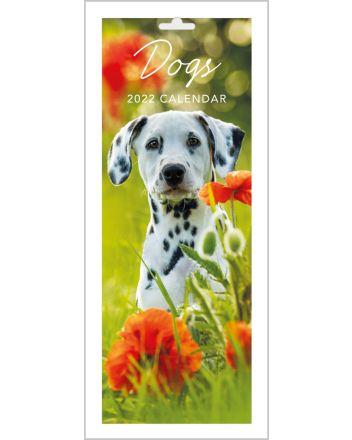 Abacus Dogs Slim Calendar 2022