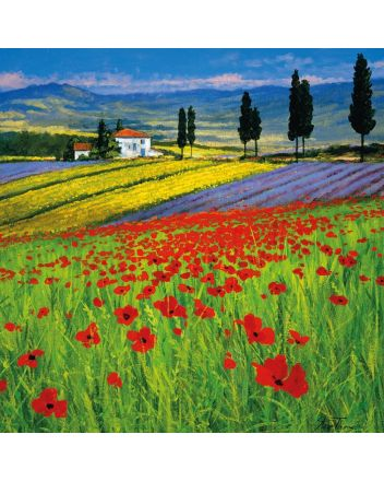 Museum and Galleries Field of Dreams Greeting Card