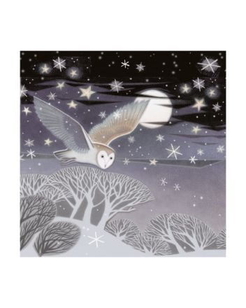 8 Museums and Galleries Owl Christmas Cards