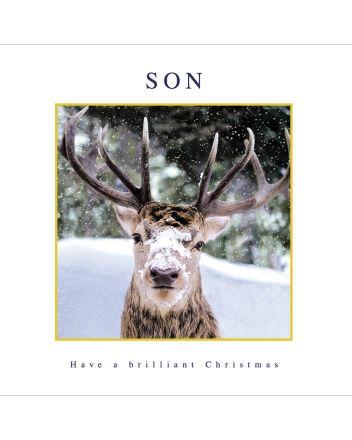 Woodmansterne Son Reindeer Christmas Card