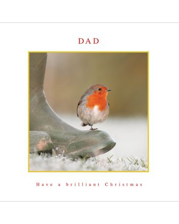 Woodmansterne Robin on Boot Dad Christmas Card