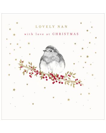 Woodmansterne Lovely Nan Robin Christmas Card