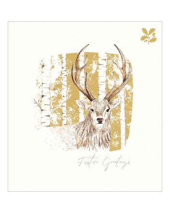 5 Deer National Trust Habitat Charity Christmas Cards