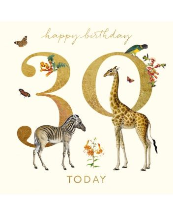 Museums and Galleries Giraffe and Zebra 30th Birthday Card