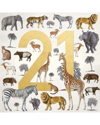 Museums and Galleries Safari 21st Birthday Card