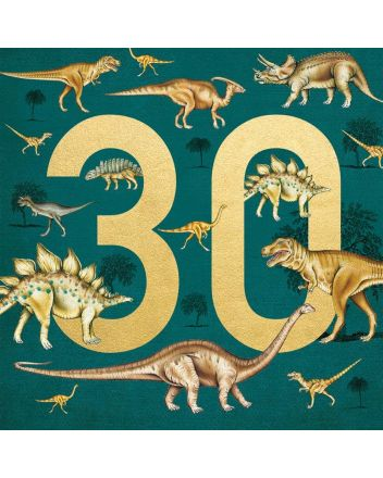 Museums and Galleries Dinosaurs 30th Birthday Card