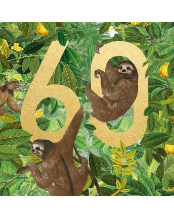 Museums and Galleries Sloth 60th Birthday Card