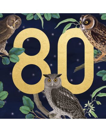 Museums and Galleries Owls 80th Birthday Card