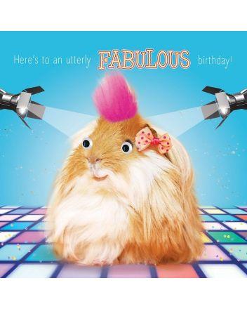 Tracks Fluff Guinea Pig Fabulous Birthday Card