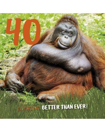 Tracks Orangutan Happy 40th Birthday Card