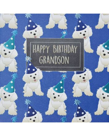 WJB Hey Fresco Grandson Birthday Card
