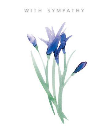 Lucilla Lavender With Sympathy Card