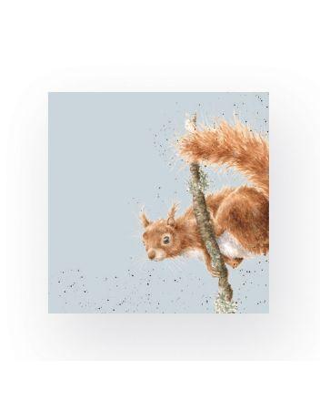 Wrendale Acrobat Squirrel Cocktail Napkins