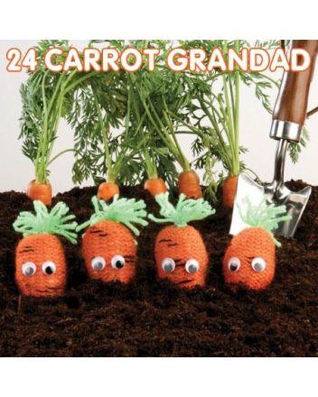 Mint 24 Carrot Grandad Birthday Card