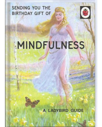 Ladybird Guide to Mindfulness Birthday Card