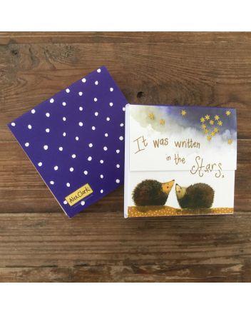 Alex Clark Stargazers Hedgehog Mini Notepad