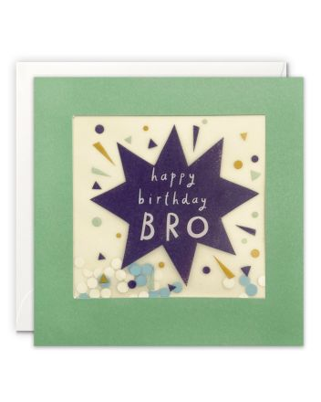 Paper Shakies Brother Star Birthday Card