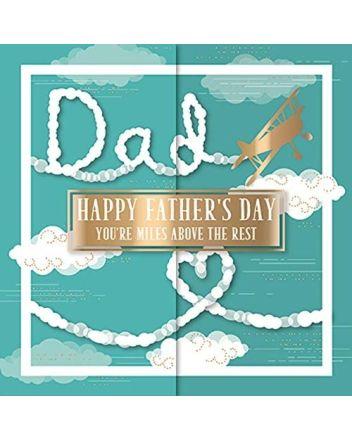 Ling Bi-Plane Fathers Day Card