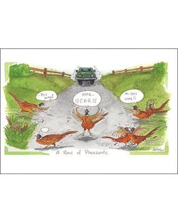 Alisons Animals Panic of Pheasants Greeting Card