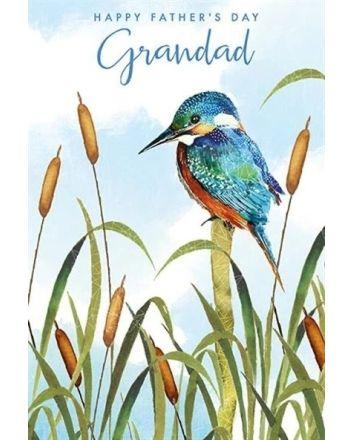 Nigel Quiney Grandad Kingfisher Fathers Day Card