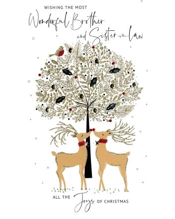 Second Nature Brother and Sister-in-law-in-law Christmas Card