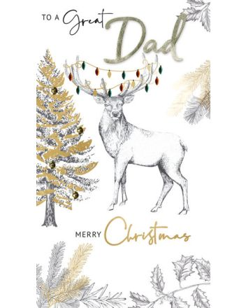 Second Nature Great Dad Christmas Card