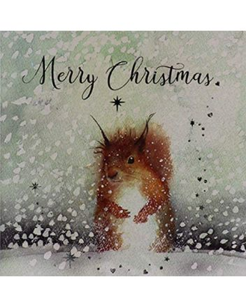 Paperlink 6 Snowy Red Squirrel Charity Christmas Cards