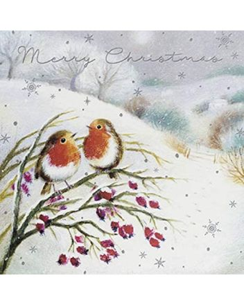 Paperlink 6 Robins on a Branch Charity Christmas Cards