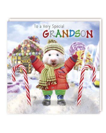Tracks Gogglies Grandson Christmas Card